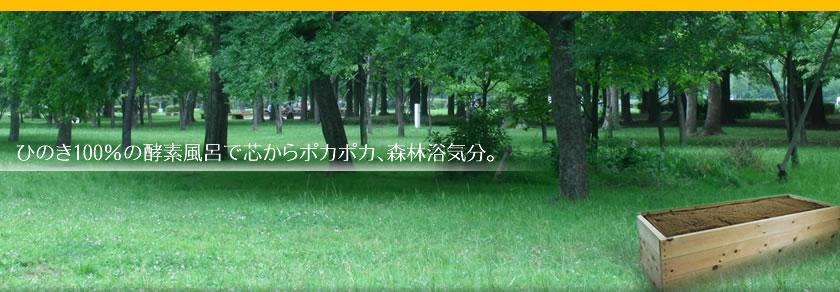東京 酵素 風呂